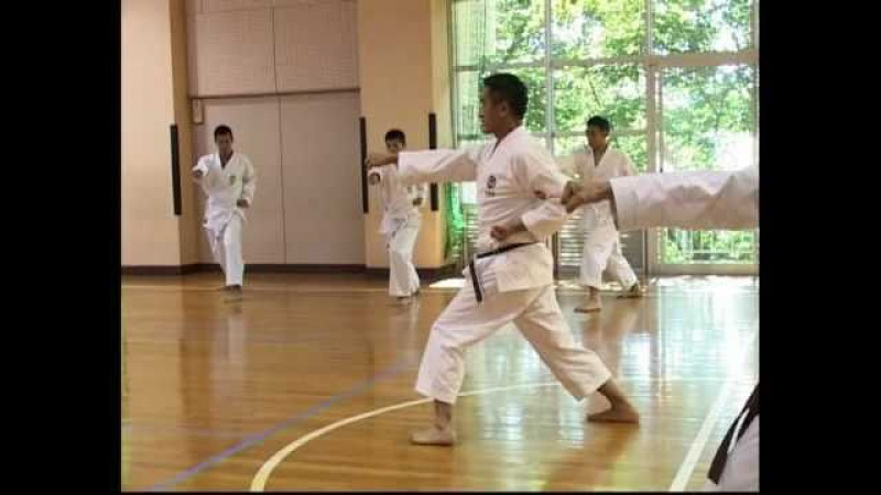 Shotokan karate Ichikawa Firefighters Karate Federation
