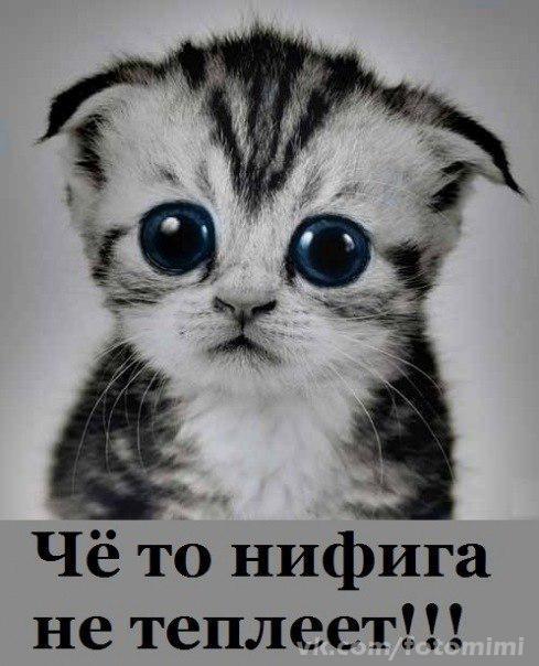 А весна уже)))