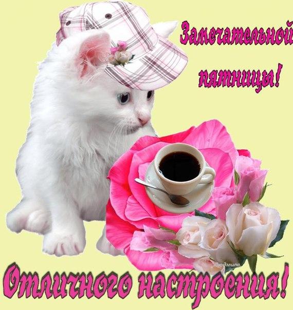 http://cs625623.vk.me/v625623878/299ea/fnpgOQSFqZM.jpg