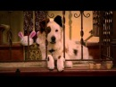 Сериал Disney - Собака точка ком (Сезон 1 Серия 9)
