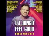 DJ JunGo - Feel Good