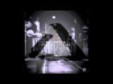 Specimen A - Chasing Shadows ft. David Ivan (Original Mix)