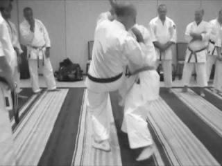 Taira Bunkai 2010 sepai kata training notes