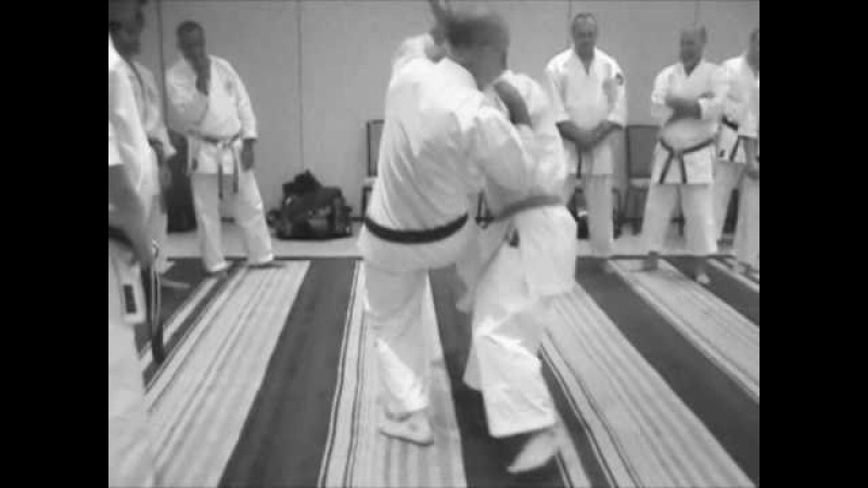 Taira Bunkai 2010 sepai kata training notes