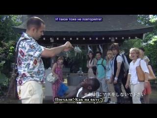 日本人の知らない日本語 / Nihonjin no Shiranai Nihongo / Японский, который не знают японцы - 10 серия (субтитры)