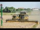 Moisson-BIG Harvest 2015 | NEW-HOLLAND CR9.80-CX8080 | JOHN DEERE 8420-7710-7720 Tractors
