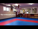 Karate Kumite-Specific Speed Agility and Quickness Training Program