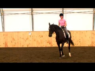 Turn on Forehand - 40 Fundamentals of English Riding
