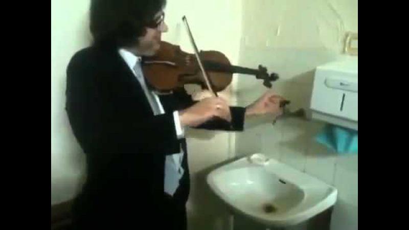 Дуэт скрипки и крана