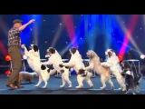 WOLFGANG LAUENBURGER - DRESSAGE CHIENS - LE PLUS GRAND CABARET DU MONDE