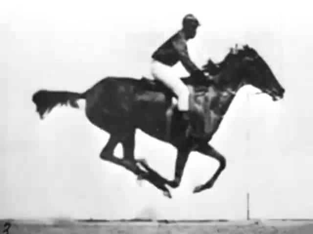The horse in motion (Eadweard Muybridge) 1878 First Film Ever