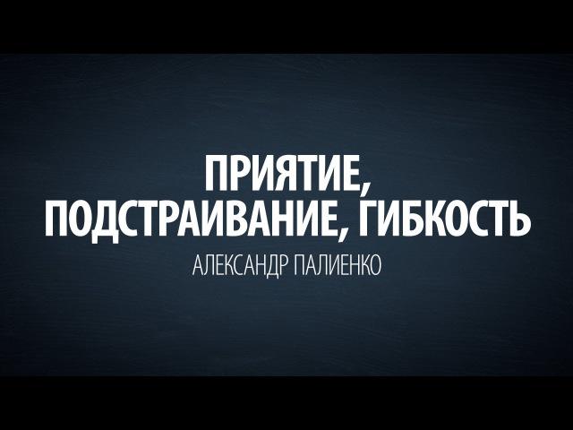 Приятие подстраивание гибкость Александр Палиенко