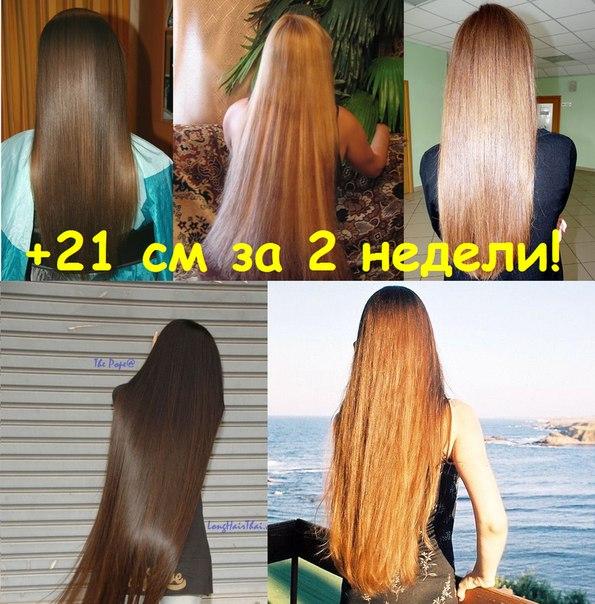 Как отрасти волос в домашних условиях 168