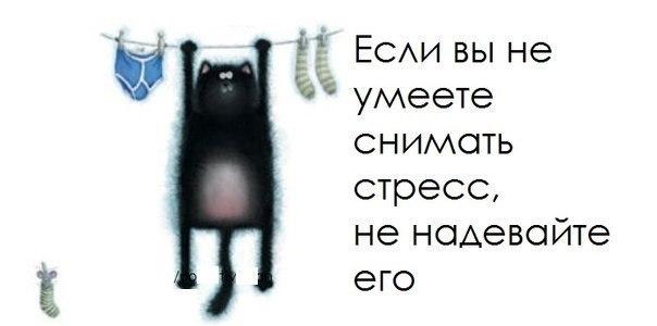 http://cs625628.vk.me/v625628755/a46a/OTXwCsQ-7YA.jpg