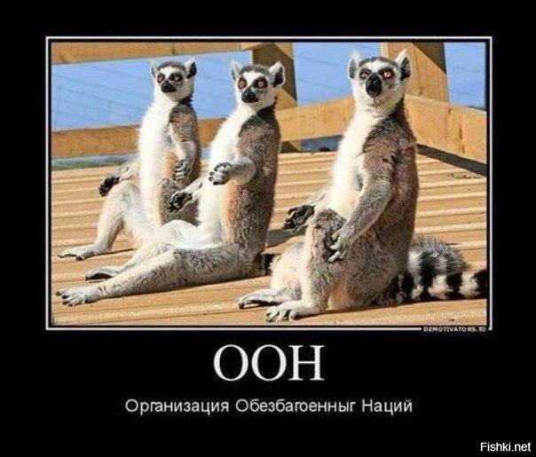 Украина проинформировала членов Совета Европы о провокации в Крыму и ситуации с Пановым, - МИД - Цензор.НЕТ 4850