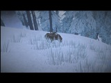 The Long Dark (все бункеры) #1 (