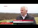 Благодатная земля Чечни: на 600 гектарах земли идут посевные работы.