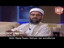 Шейх Фарид Баджи Зайтуни о вахабитах