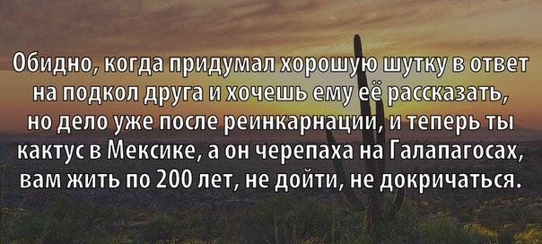 https://pp.vk.me/c625629/v625629354/4b429/nLJ4e0Bdk9U.jpg