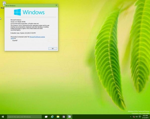 mediaget для windows 7 и 8 скачать бесплатно