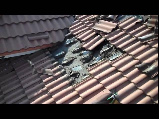 Família ouviu um barulho estranho vindo do telhado e quando olharam na telha nem acreditaram