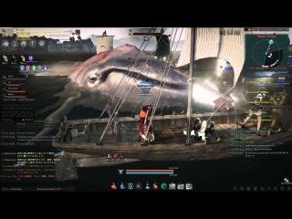 Black Desert / Defa_NeT Охота на королевского кита