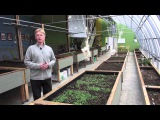 73. Passive solar greenhouse A way to produce more local food and use less energy to do it