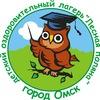 """БУ г.Омска """"ДОЛ """"ЛЕСНАЯ ПОЛЯНА """""""