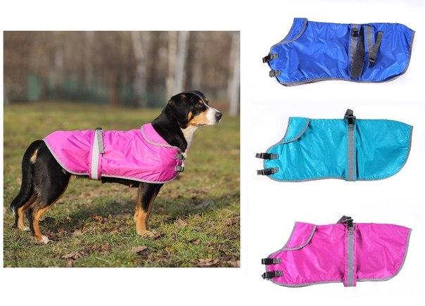 OSSO Fashion - лучшие товары для животных,дрессировки,спорта ZTst4WWcwlo