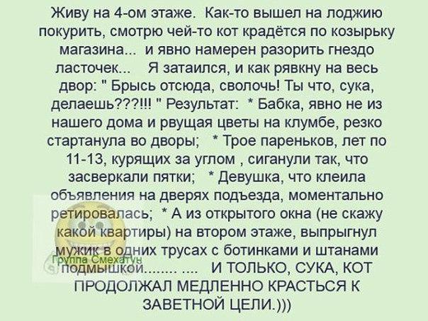 http://cs625630.vk.me/v625630911/45379/8W03o3KWrXA.jpg