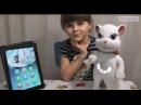 Говорящая игрушка Кошечка Анжела (подружка кота Тома)