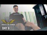 Steve Cook - DAY 6 - Legs - UNDER THE WINGS