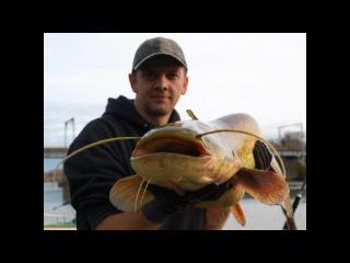Видео ловля сома зимой