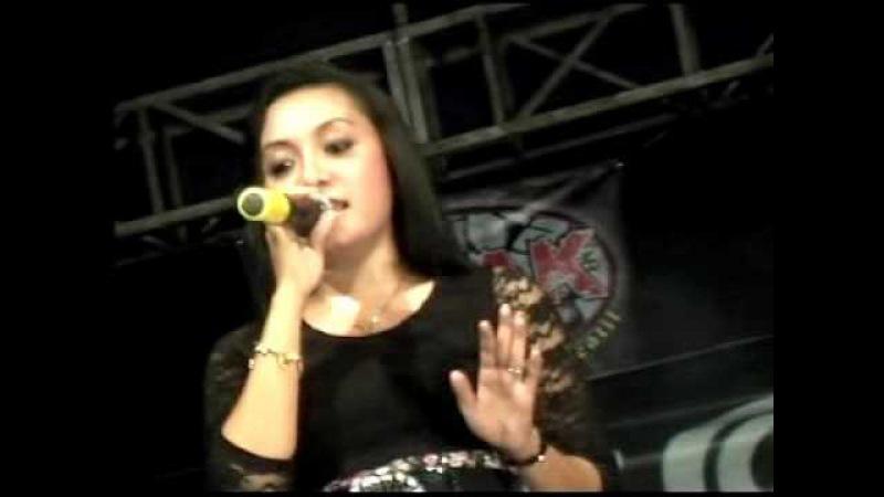 TKW KUBOTA Live In METESEH By Video Shoting AL AZZAM