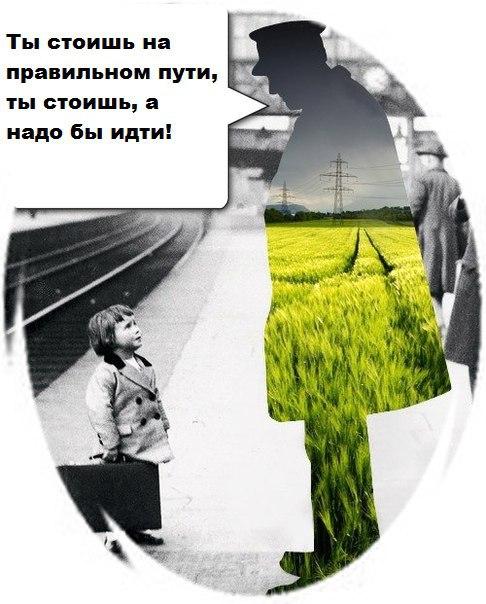 https://pp.vk.me/c625631/v625631034/3d80d/narnJvIhgCg.jpg
