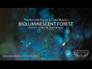BIOLUMINESCENT FOREST PROJECTIONS IN THE FOREST Short Film Nominee Cosmic Cine Filmfestival 2015