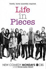 Жизнь в деталях / Life in Pieces (Сериал 2015)