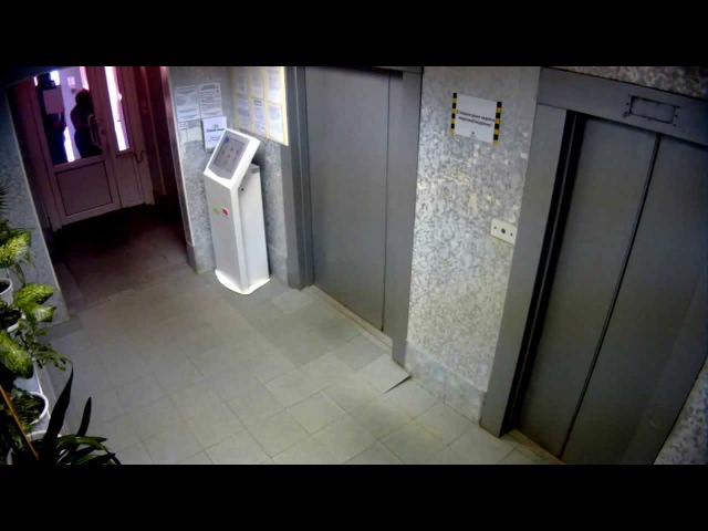 Собаку чуть не задушил лифт. Пермь. Dog nearly strangled Elevator
