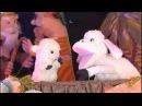 Рождественская история Маленькая овечка