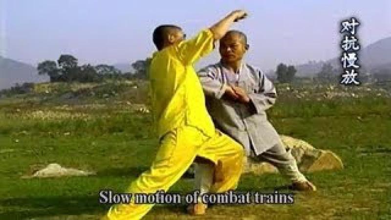 Shaolin big flood kung fu combat methods