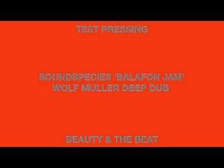 Soundspecies 'Balafon Jam Wolf Muller Deep Dub' Beauty & The Beat
