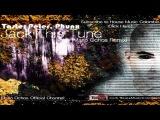 Taster Peter, Phunx - Jack This Tune (Mario Ochoa Remix)