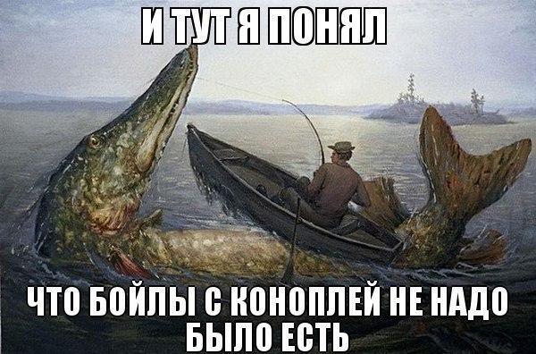 http://cs625717.vk.me/v625717052/3b1b1/ECB8D7lYrhI.jpg