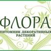 Питомник декоративных растений Флора