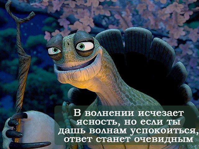 http://cs625717.vk.me/v625717196/3663c/tx2x3ZIoue0.jpg