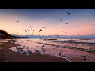Музыка для души - Звуки природы, шум моря, крики чаек, морской прибой...спокойствие...релакс