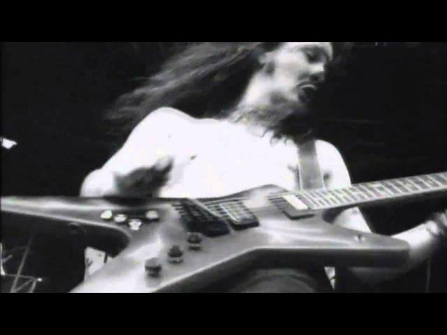 Dimebag Darrell - Domination Solo (Live)