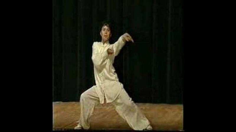 Chen Style Taiji - Master Aiping Cheng