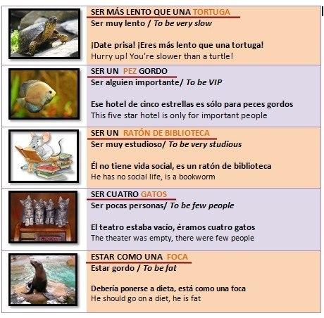 Уроки испанского языка онлайн. Бесплатные уроки испанского ...