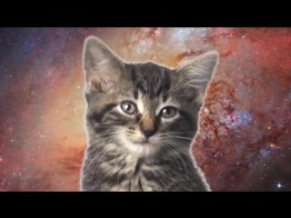 Space_Cats_-_Magic_Fly_(Prod._by_Enjoyki